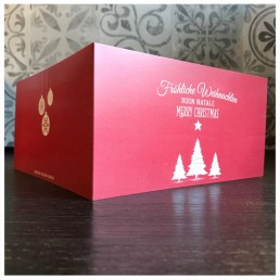 exclusive handwritten christmas cards, written with fountain pens by Pensaki robots